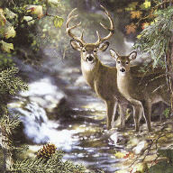 Servietten Deers on a Creek