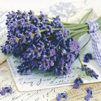 Servietten Lavender Greetings